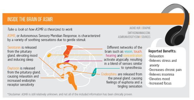 Origin Theory of ASMR | ASMR University